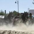 Una década lleva ya el concurso de tiro y arrastre del Sector-Agrupación La Seu-La Xerea-El Mercat, aunque afortunadamente no con los mismos caballos. El 20 de septiembre empieza la edición de este año entre aromas de marisco.