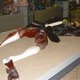 Maqueta de Gulliver en el Museo Fallero del Gremio